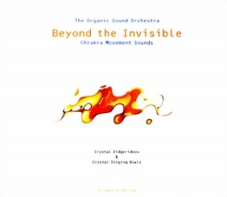 The Organic Sound Orchestra: Beyond the Invisible (CD)
